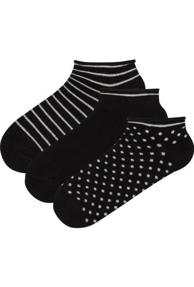 Penti Çok Renkli Darky 3'lü Patik Çorap