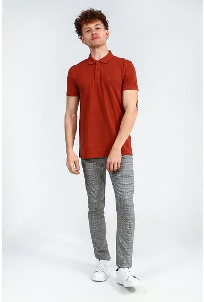 Collezione Erkek Kiremit Regular Polo Yaka T-Shirt