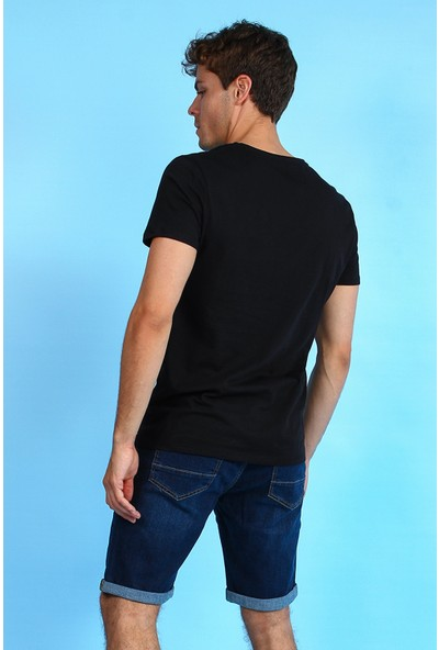 Collezione Erkek Siyah Regular T-Shirt