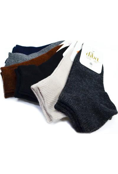 Diba 6 Adet Lambswool Yün Kadın Kışlık Patik Çorap