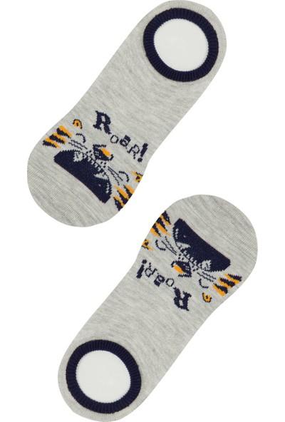 Penti Çok Renkli B. Roar 2'li Babet Çorabı