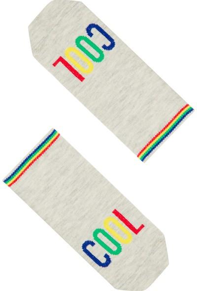 Penti Çok Renkli Erkek Çocuk Cool 4lü Patik Çorap