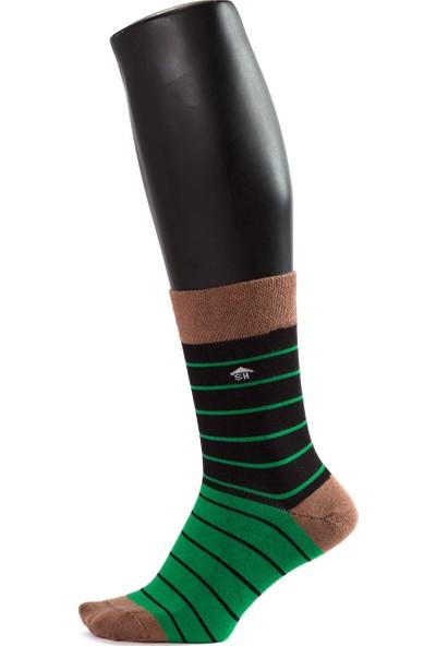 The Socks House Bambu Yeşil Siyah Çizgi Desenli Çorap