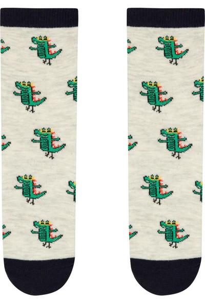 Penti Çok Renkli Erkek Çocuk Croco 4lü Soket Çorap