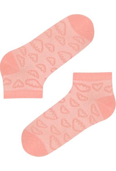 Penti Çok Renkli Kız Çocuk Dokulu Kalp 4lü Patik Çorap
