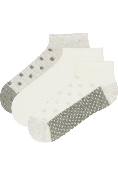 Penti Marşmelov Kız Çocuk Pure 3lü Patik Çorap