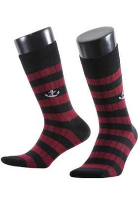 Aytuğ Sail Erkek Pamuk Soket Çorap - 19002