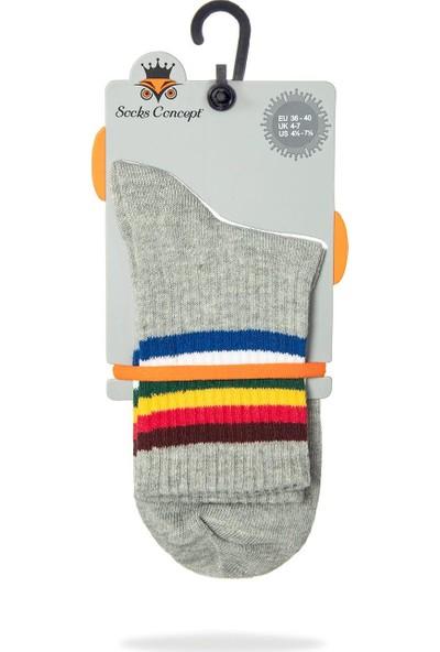 Socks Concept Serena Gri Renk Renkli Çizgili Tenis Çorabı