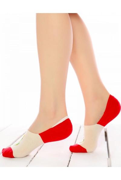 Socks Concept Kırmızı-Ekru Renk Kaktüs Desen Babet Çorap