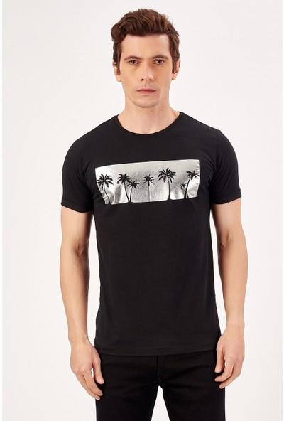 Manche Siyah Erkek Palmiye Varak Baskılı T-Shirt Me20S214727