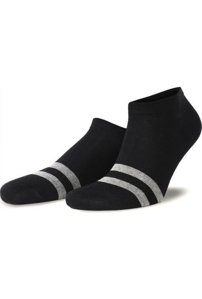 Brogetti Siyah Renk Gri Çizgili Kısa Soket Çorap