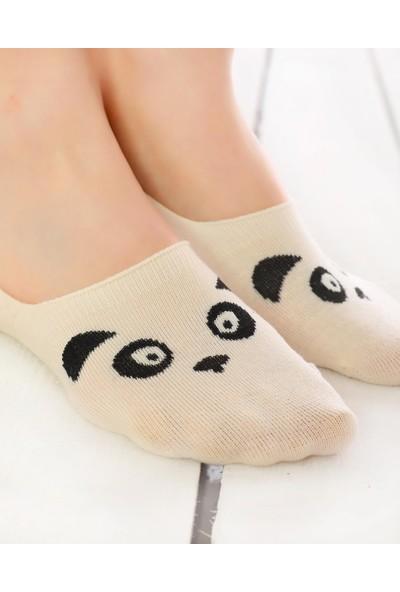 Socks Concept Ekru Renk Panda Desenli Babet Çorap