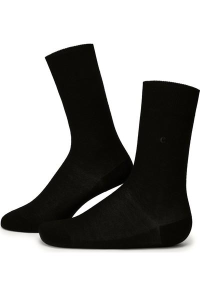 Cacharel Erkek Çorap 50223437-001