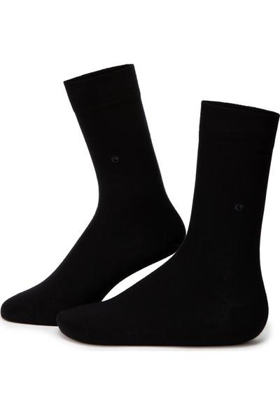 Cacharel Erkek Çorap 50229391-001