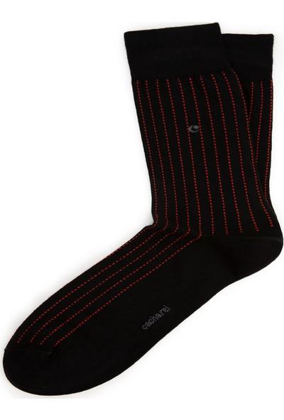 Cacharel Erkek Çorap 50231171-001