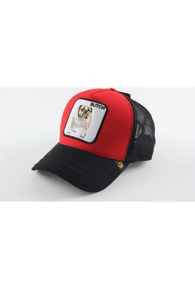 Goorin Bulldog Desenli Şapka