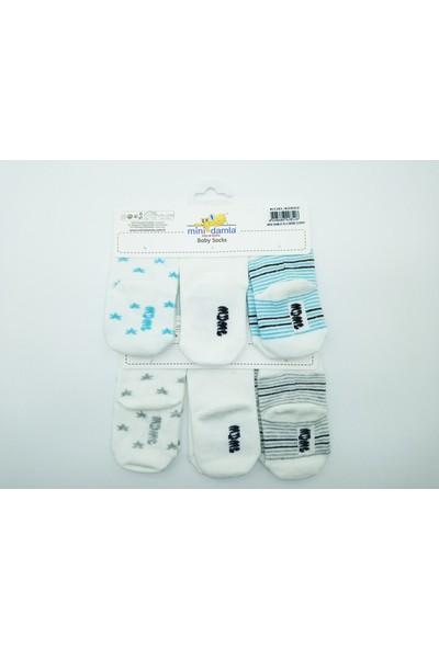 Minidamla 6'lı Yeni Doğan Erkek Bebek Çorap Seti