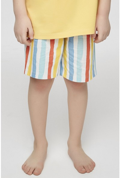 Penti Çok Renkli Çocuk Kind Stripe Şort
