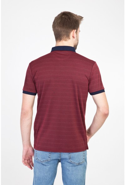 Kiğılı Erkek Polo Yaka Regular Fit Merserize T-Shirt