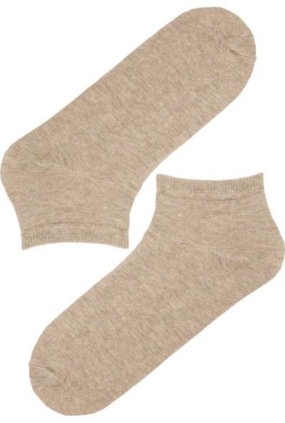 Penti Kahve Basic 4 Lü Patik Çorap