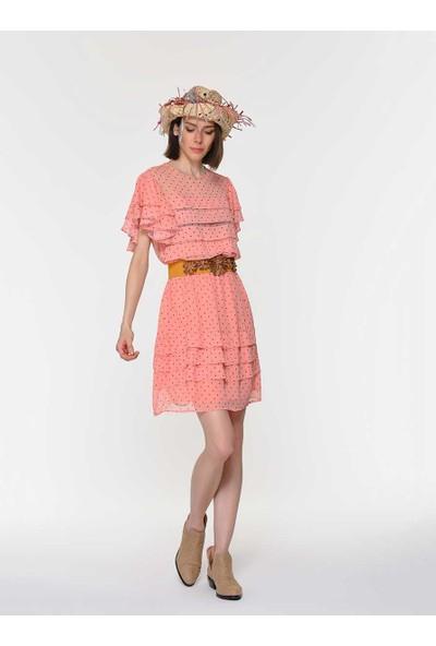 Roman Puantiye Detaylı Elbise-Y1911034-089