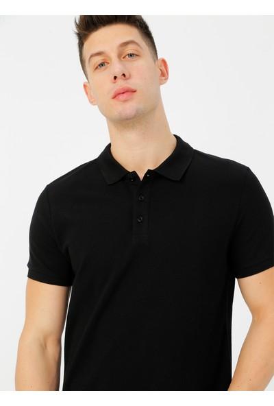 Limon Company Erkek Polo Tişört