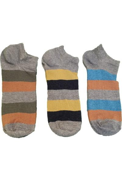 Çorap Gurusu Pamuk 3'lü Erkek Çizgili Kısa Patik Çorap