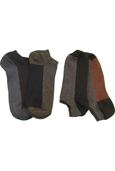 Çorap Gurusu Pamuk Kısa Çorap 4'lü Erkek Patik Çorap