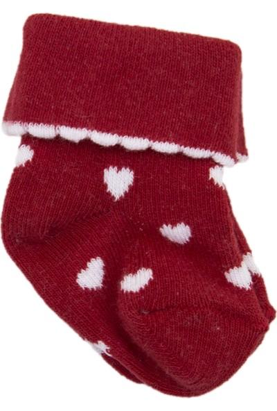 Olay Yeni Doğan Soket Çorap 7.01.0002 3'lü Renkli 0 - 6 Ay