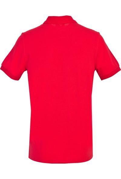 Kiğılı Polo Yaka Slim Fit T-Shirt