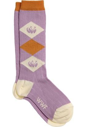 Organik Baklava Panda Desenli Bebek Dizaltı Çorap