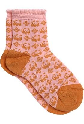 Organik Panda Desenli Bebek Soket Çorap