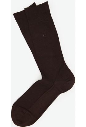 Cacharel Y7Mer2 Çorap Koyu Kahverengi