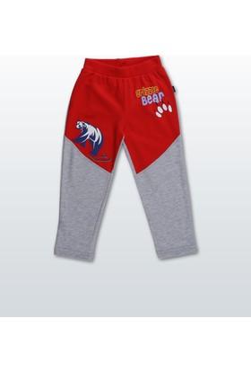 Wonder Kids Erkek Çocuk Tek Alt WK17W1520