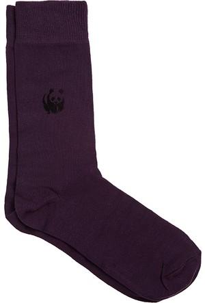 Doa Erkek Çorap 034