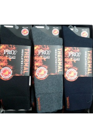 Pro 12'Li Erkek Termal Dikişsiz Çorap