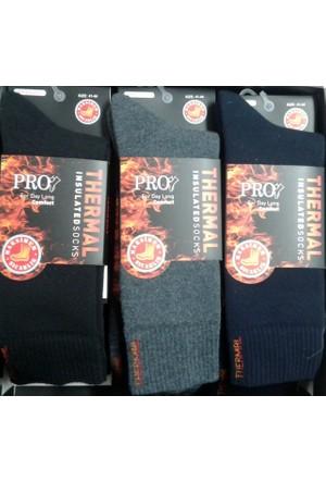Pro 6'Lı Erkek Termal Dikişsiz Çorap