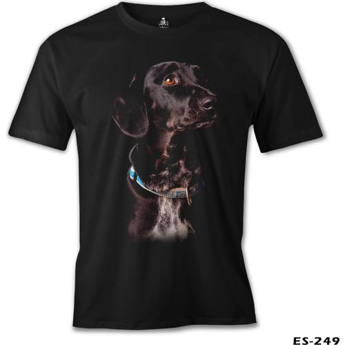 Lord Doggy Dog