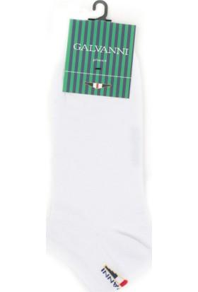 Galvanni Erkek Beyaz Çorap - Zorra
