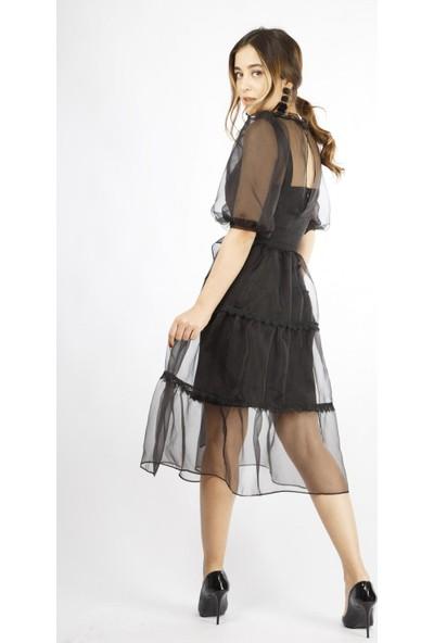 Favori̇ Tüllü Uzun Elbise