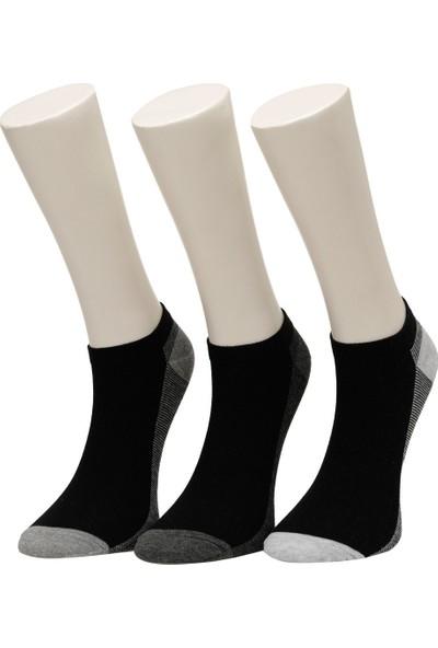 Garamond Color Line 3'lü Ptk-M Siyah Erkek Çorap