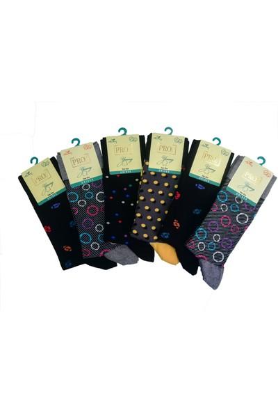 Pro Çorap 12'li Pro Çorap Arısto Penye Çorabı