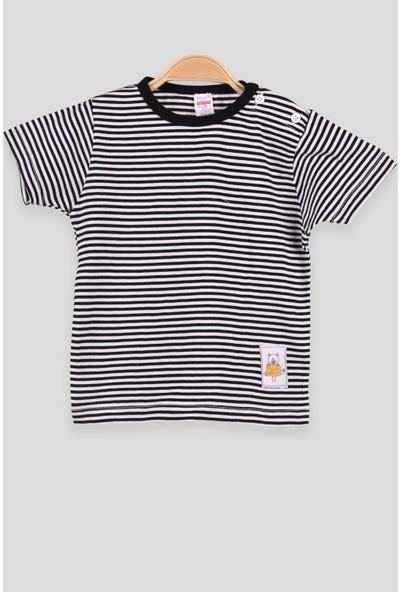 Breeze Erkek Bebek T-Shirt Patlı Çizgili Siyah (1-4 Yaş)