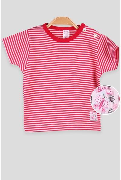 Breeze Kız Bebek T-Shirt Patlı Çizgili Fuşya (1-4 Yaş)