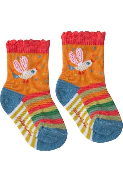 Catimini Çorap Turuncu 23 - 24