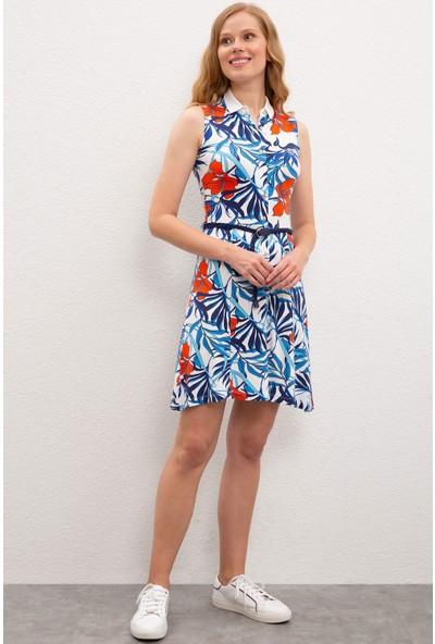 U.S. Polo Assn. Kadın Örme Elbise 50221686-VR184