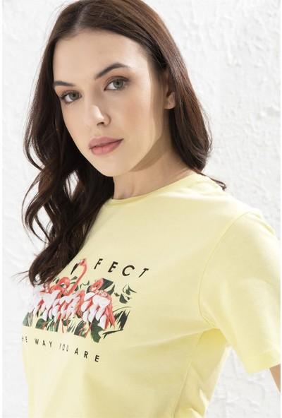 Setre Sarı Bisiklet Yaka Kısa Kol Baskılı Pamuk T-Shirt
