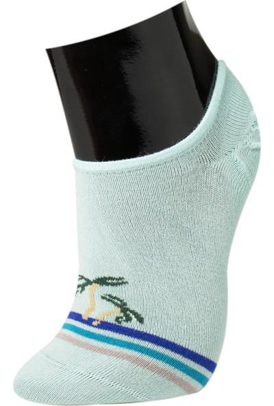 Roff Bamboo Kadın Yürüyüş Çorabı 6'lı Çok Renkli 36 - 40