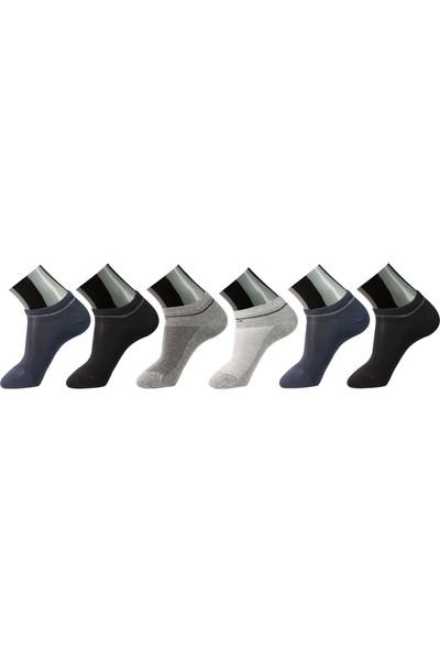 Roff Modal Erkek Patik Çorabı 6'lı Çok Renkli 40 - 45