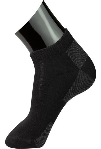 Roff Penye Erkek Patik Çorabı 6'lı Çok Renkli 40 - 45